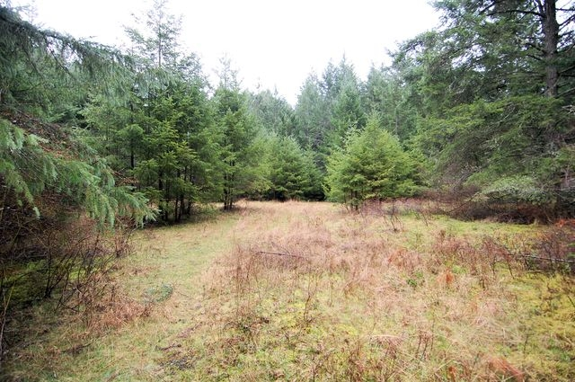 Photo 13: Photos: 2024 STEWART ROAD in NANOOSE BAY: House for sale : MLS® # 352119