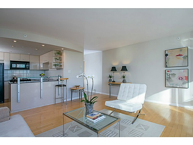 "Photo 5: 1505 501 PACIFIC Street in Vancouver: Downtown VW Condo for sale in ""THE 501"" (Vancouver West)  : MLS(r) # V1047969"