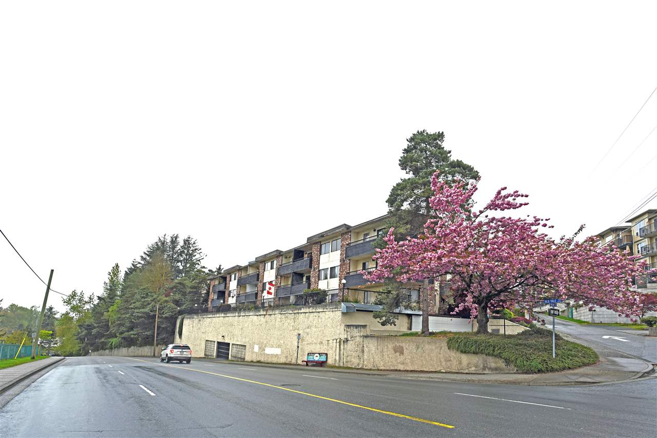 Photo 2: 318 2551 WILLOW Lane in Abbotsford: Central Abbotsford Condo for sale : MLS® # R2181188