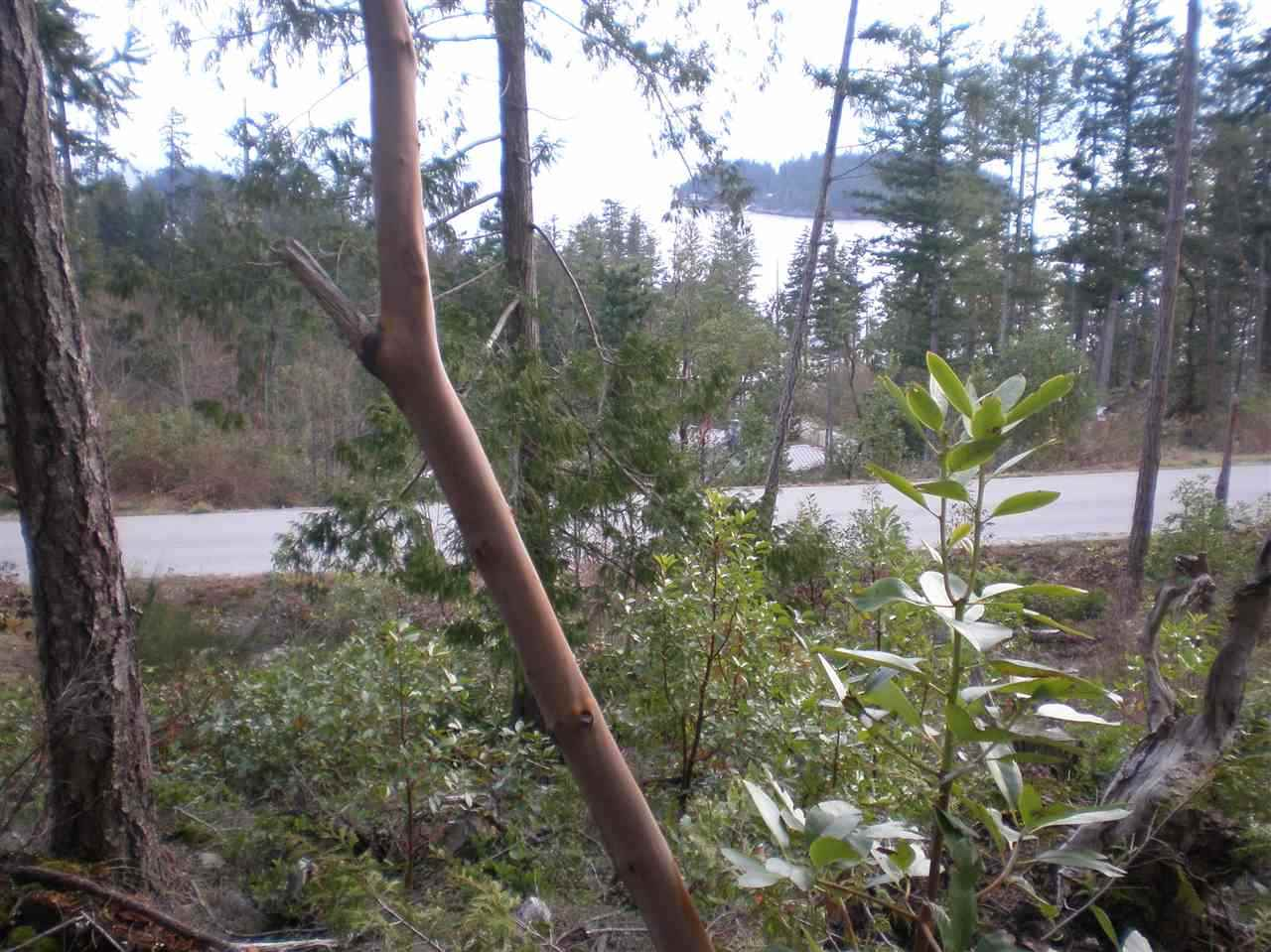 "Photo 8: Photos: LOT 105 JOHNSTON HEIGHTS Road in Pender Harbour: Pender Harbour Egmont Home for sale in ""DANIEL POINT"" (Sunshine Coast)  : MLS® # R2244687"