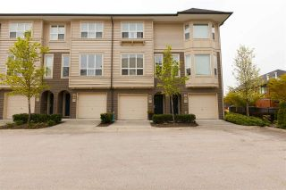 "Main Photo: 97 7938 209 Street in Langley: Willoughby Heights Townhouse for sale in ""Red Maple Park"" : MLS®# R2260950"