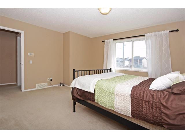 Photo 19: 51 CHAPMAN Circle SE in Calgary: Chaparral House for sale : MLS(r) # C4011695