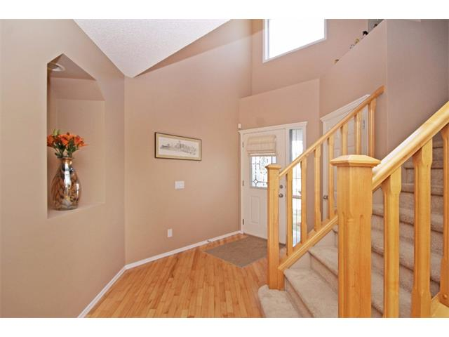 Photo 10: 51 CHAPMAN Circle SE in Calgary: Chaparral House for sale : MLS(r) # C4011695