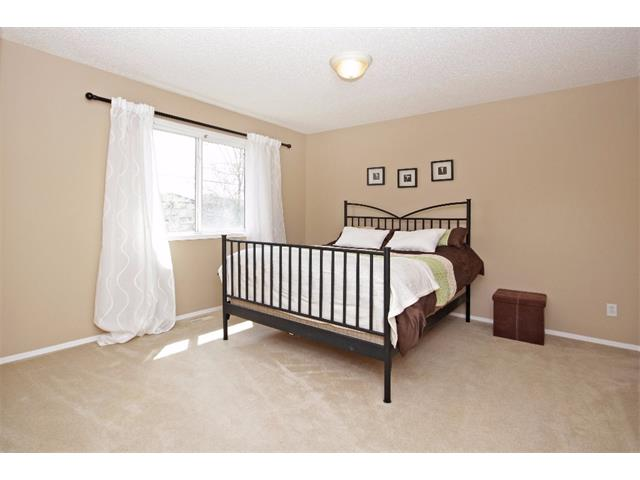 Photo 20: 51 CHAPMAN Circle SE in Calgary: Chaparral House for sale : MLS(r) # C4011695