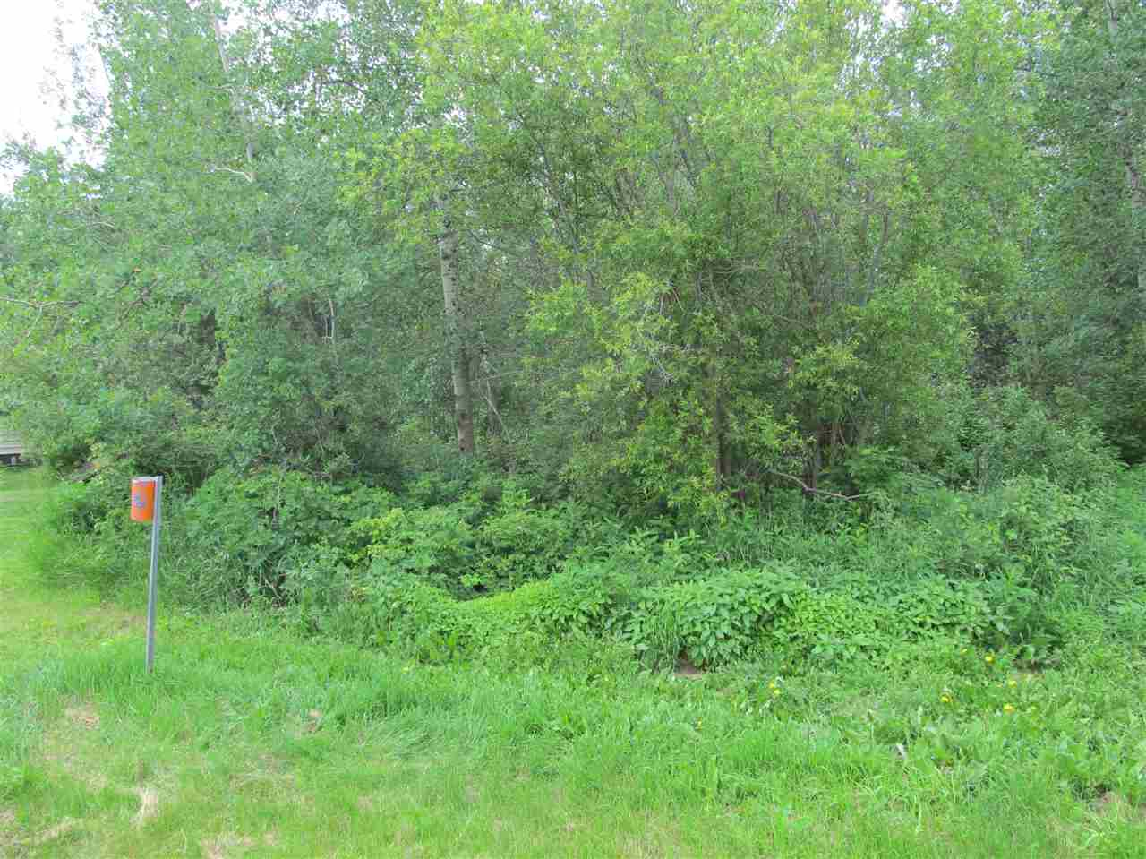 Photo 7: 451 Lakeview Drive: Rural Lac Ste. Anne County Rural Land/Vacant Lot for sale : MLS(r) # E4046294