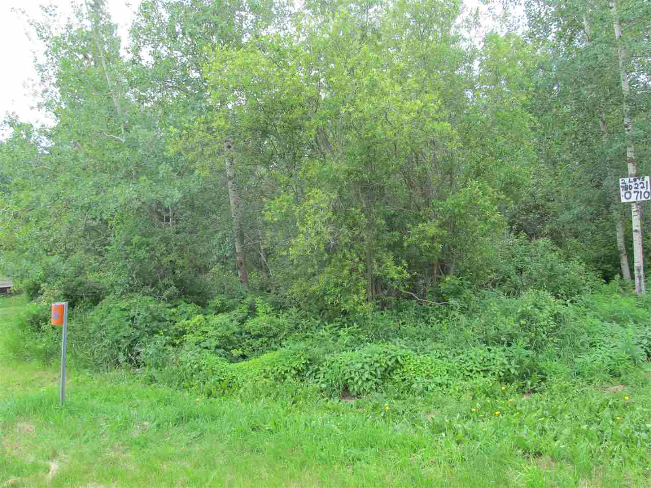 Photo 6: 451 Lakeview Drive: Rural Lac Ste. Anne County Rural Land/Vacant Lot for sale : MLS(r) # E4046294