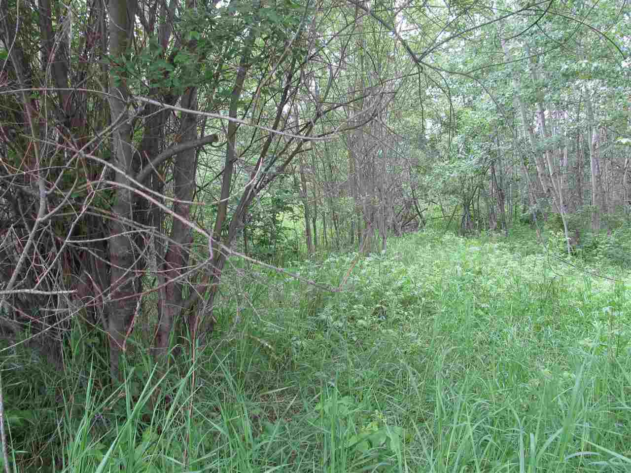 Photo 4: 451 Lakeview Drive: Rural Lac Ste. Anne County Rural Land/Vacant Lot for sale : MLS(r) # E4046294