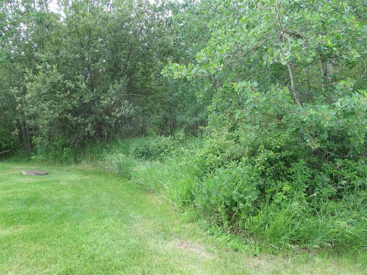 Main Photo: 451 Lakeview Drive: Rural Lac Ste. Anne County Rural Land/Vacant Lot for sale : MLS(r) # E4046294