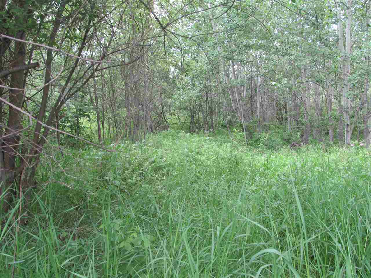 Photo 2: 451 Lakeview Drive: Rural Lac Ste. Anne County Rural Land/Vacant Lot for sale : MLS(r) # E4046294
