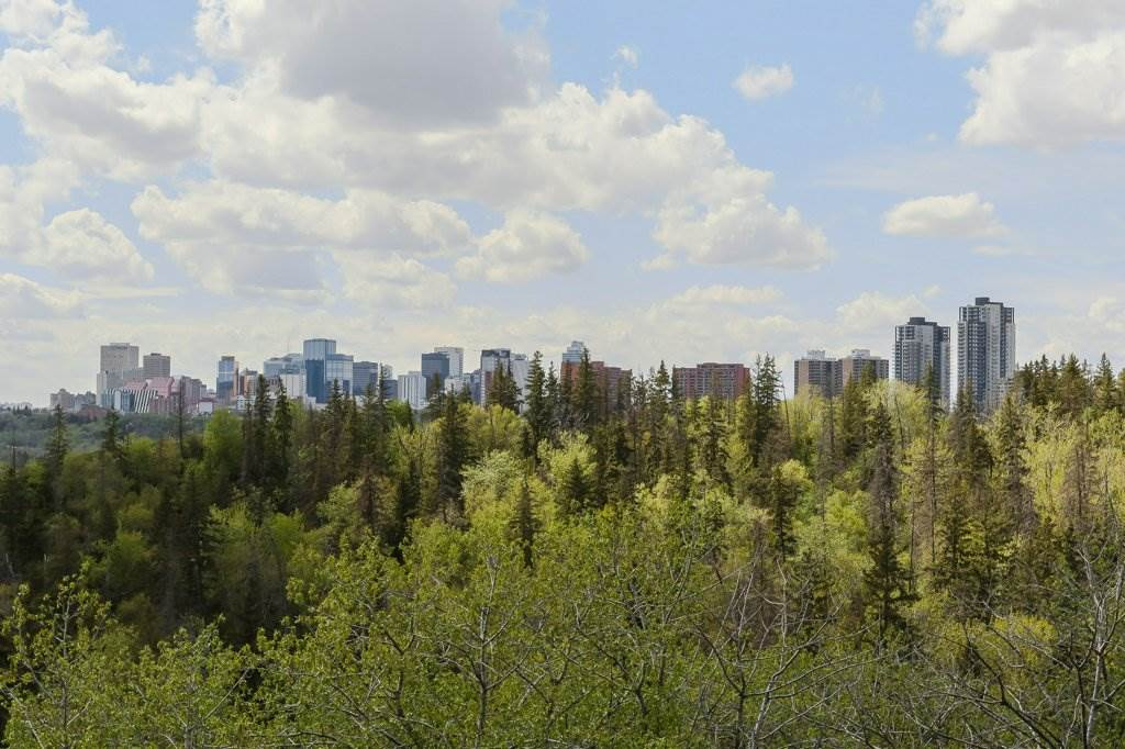 Around the corner from the house is an amazing view of the city. Surrounded with biking and walking trail systems.
