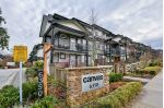 "Main Photo: 23 6350 142 Street in Surrey: Sullivan Station Townhouse for sale in ""Canvas"" : MLS® # R2230375"