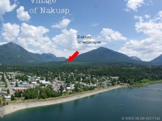 Main Photo: Lot 9 Alexander Road in Nakusp Rural: Home for sale : MLS(r) # 2217146