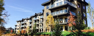 Main Photo:  in Edmonton: Zone 57 Condo for sale : MLS(r) # E4050284