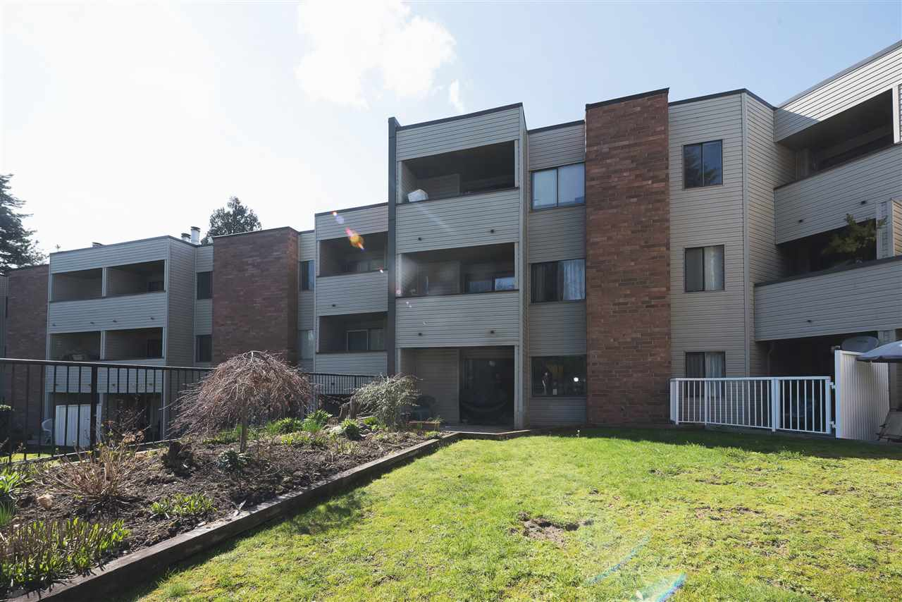 "Main Photo: 107 615 NORTH Road in Coquitlam: Coquitlam West Condo for sale in ""NORFOLK MANOR"" : MLS(r) # R2152631"