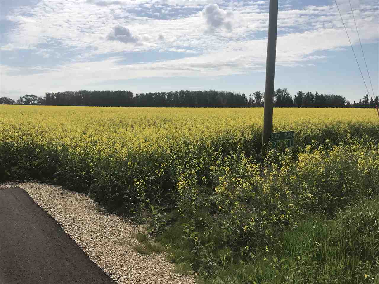 Main Photo: 1 51419 Rge Rd 10: Rural Parkland County Rural Land/Vacant Lot for sale : MLS® # E4074202