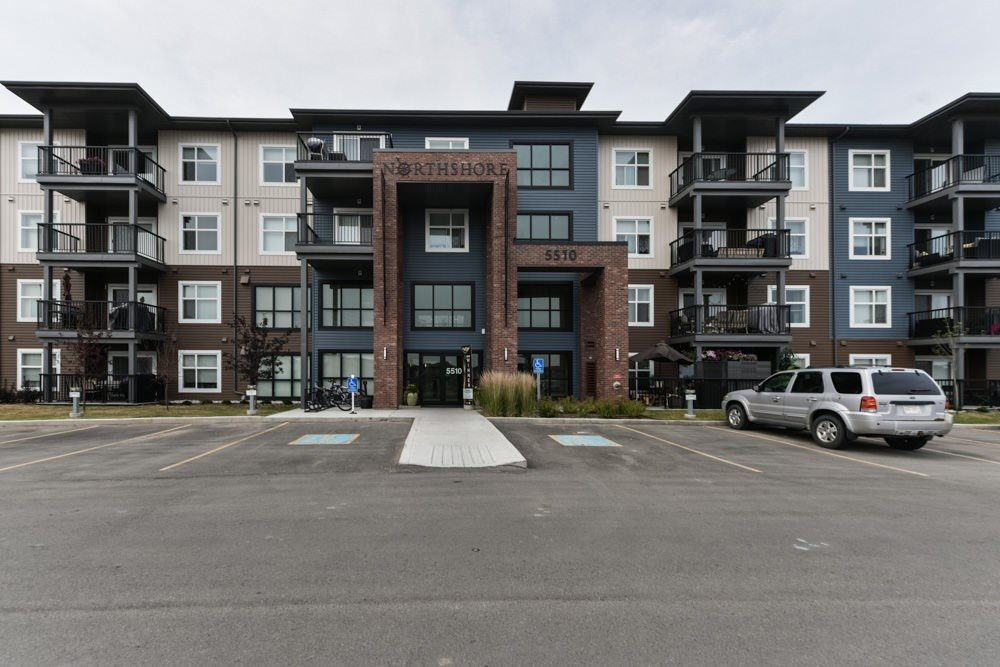 Main Photo: 314 5510 SCHONSEE Drive in Edmonton: Zone 28 Condo for sale : MLS® # E4074837