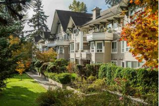 "Main Photo: PH9 7383 GRIFFITHS Drive in Burnaby: Highgate Condo for sale in ""EIGHTEEN TREES"" (Burnaby South)  : MLS® # R2218008"