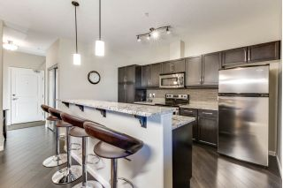 Main Photo: 211 6083 MAYNARD Way in Edmonton: Zone 14 Condo for sale : MLS® # E4089840