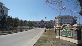 Main Photo: 343 511 Queen Street: Spruce Grove Condo for sale : MLS®# E4097835