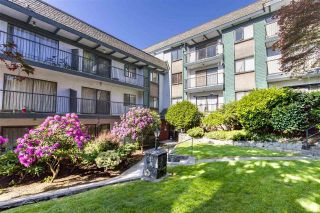 "Main Photo: 311 5450 EMPIRE Drive in Burnaby: Capitol Hill BN Condo for sale in ""EMPIRE PLACE"" (Burnaby North)  : MLS®# R2271324"