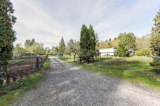 Main Photo: 12296 248 Street in Maple Ridge: Websters Corners House for sale : MLS® # R2004388