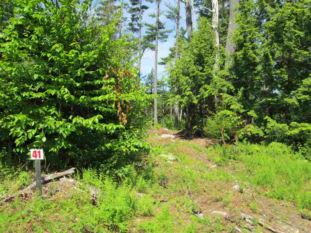 Photo 21: Photos: Lot 41 Homestead Estates Drive in Italy Cross: 405-Lunenburg County Vacant Land for sale (South Shore)  : MLS® # 201610383