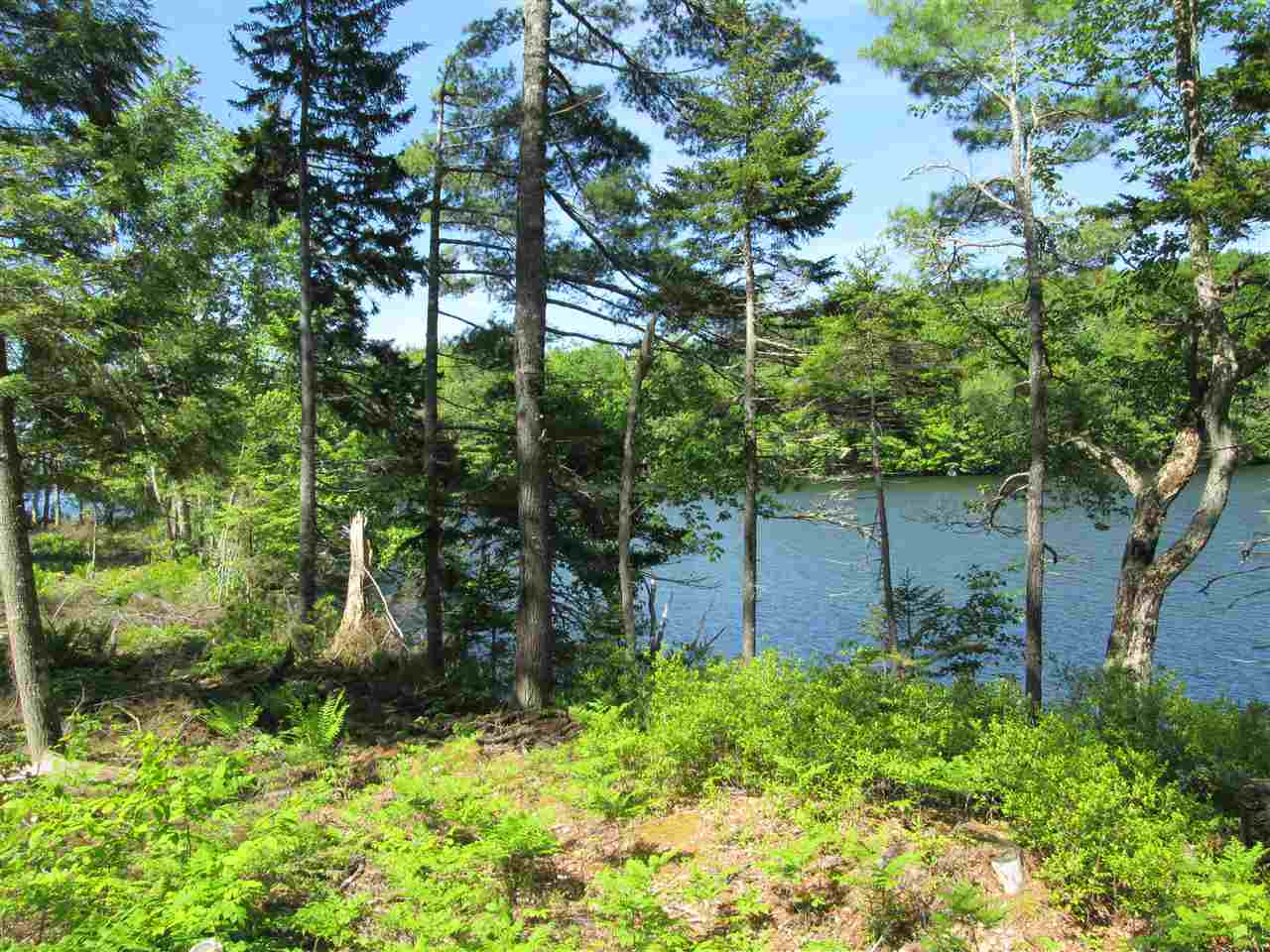 Photo 3: Photos: Lot 41 Homestead Estates Drive in Italy Cross: 405-Lunenburg County Vacant Land for sale (South Shore)  : MLS® # 201610383