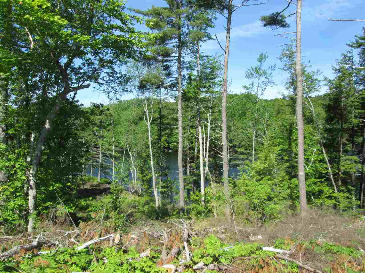 Photo 10: Photos: Lot 41 Homestead Estates Drive in Italy Cross: 405-Lunenburg County Vacant Land for sale (South Shore)  : MLS®# 201610383