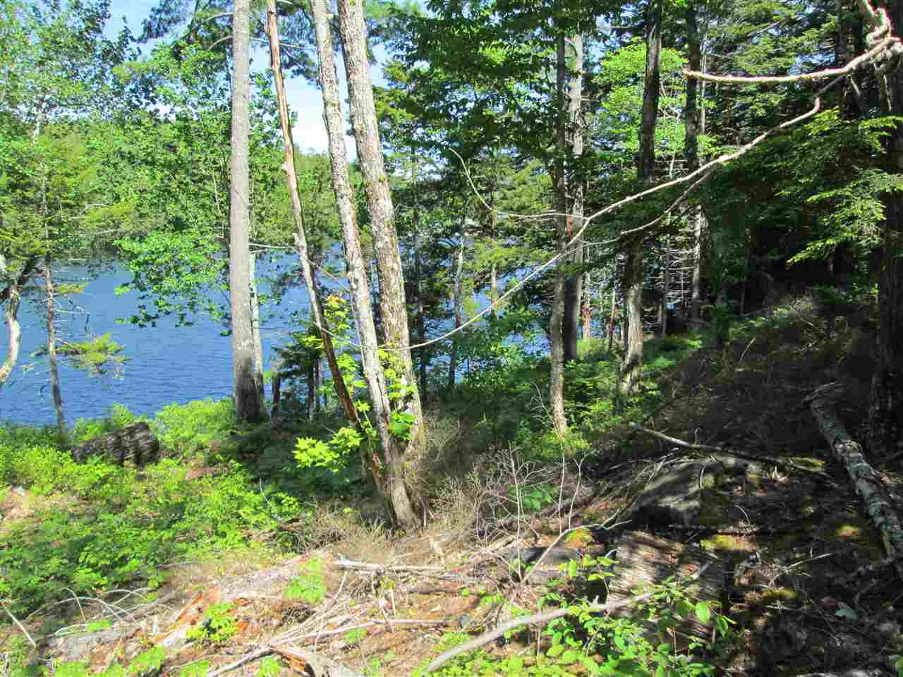 Photo 5: Photos: Lot 41 Homestead Estates Drive in Italy Cross: 405-Lunenburg County Vacant Land for sale (South Shore)  : MLS® # 201610383