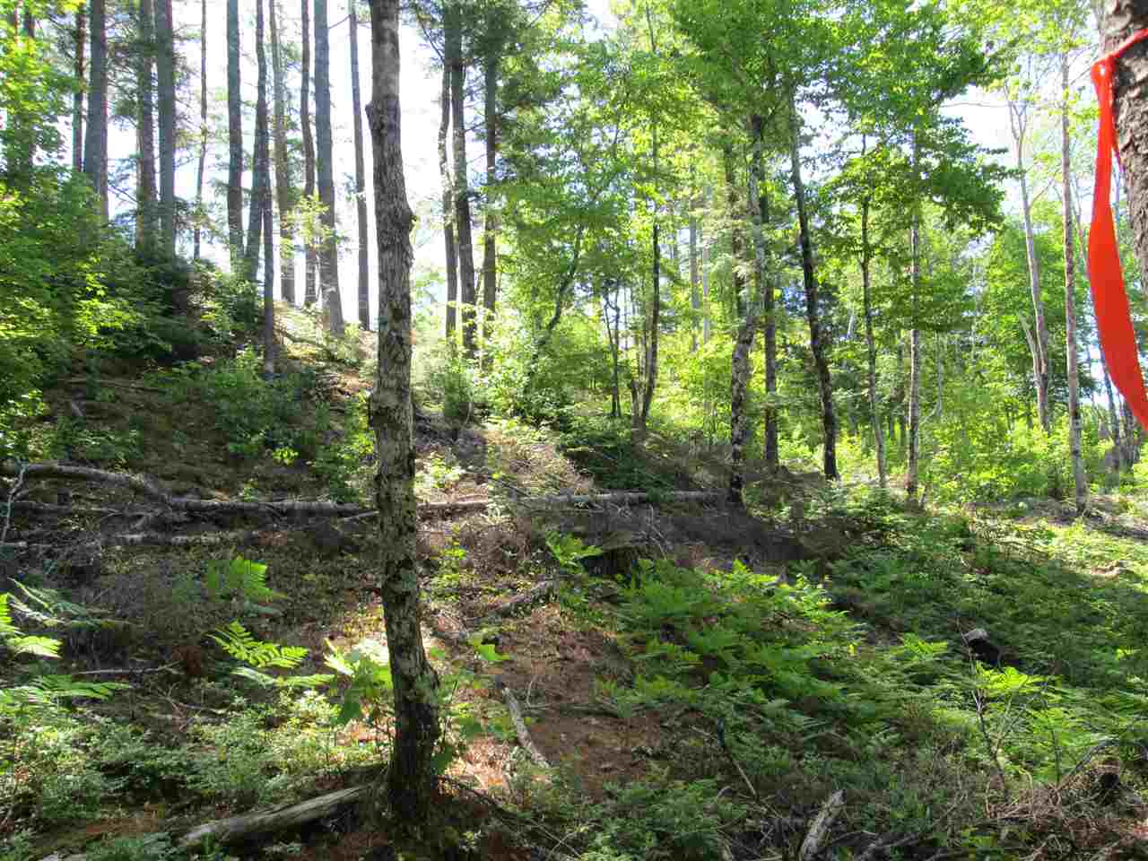Photo 18: Photos: Lot 41 Homestead Estates Drive in Italy Cross: 405-Lunenburg County Vacant Land for sale (South Shore)  : MLS® # 201610383