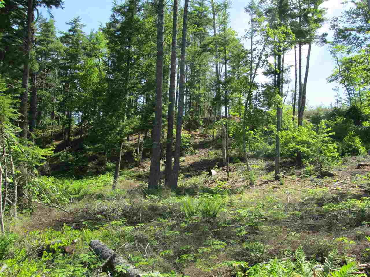 Photo 8: Photos: Lot 41 Homestead Estates Drive in Italy Cross: 405-Lunenburg County Vacant Land for sale (South Shore)  : MLS® # 201610383