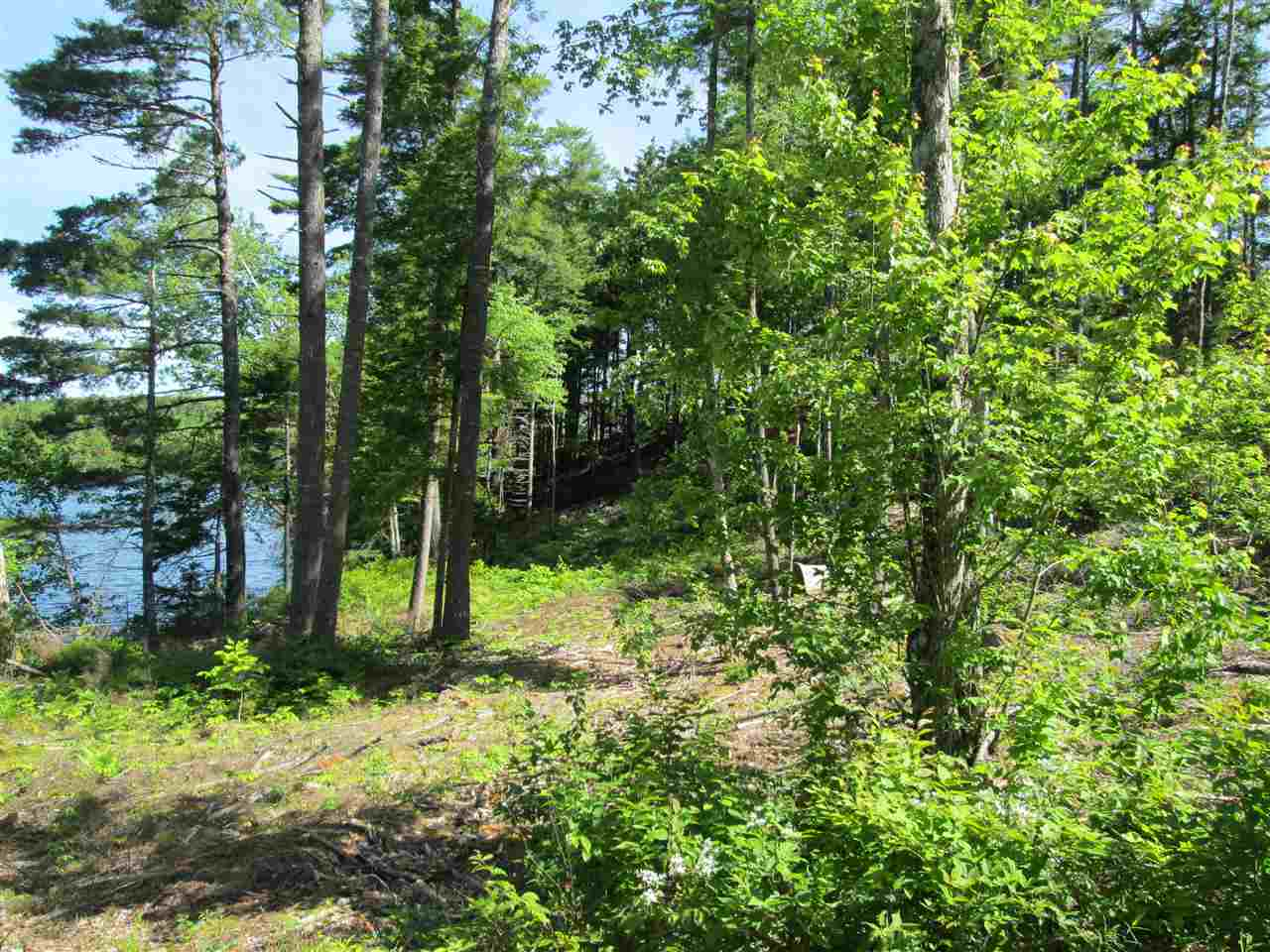 Photo 6: Photos: Lot 41 Homestead Estates Drive in Italy Cross: 405-Lunenburg County Vacant Land for sale (South Shore)  : MLS® # 201610383