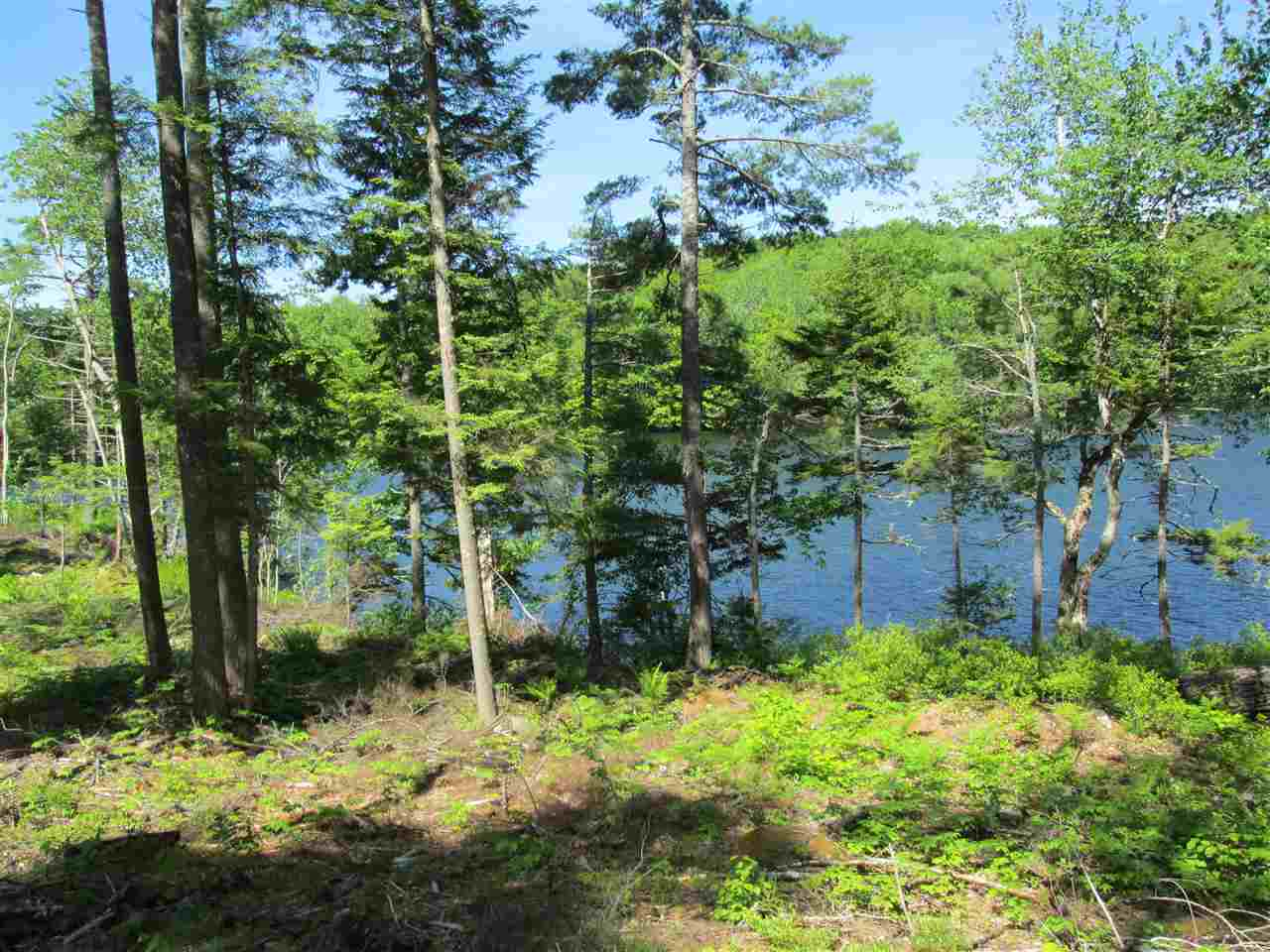 Photo 4: Photos: Lot 41 Homestead Estates Drive in Italy Cross: 405-Lunenburg County Vacant Land for sale (South Shore)  : MLS® # 201610383