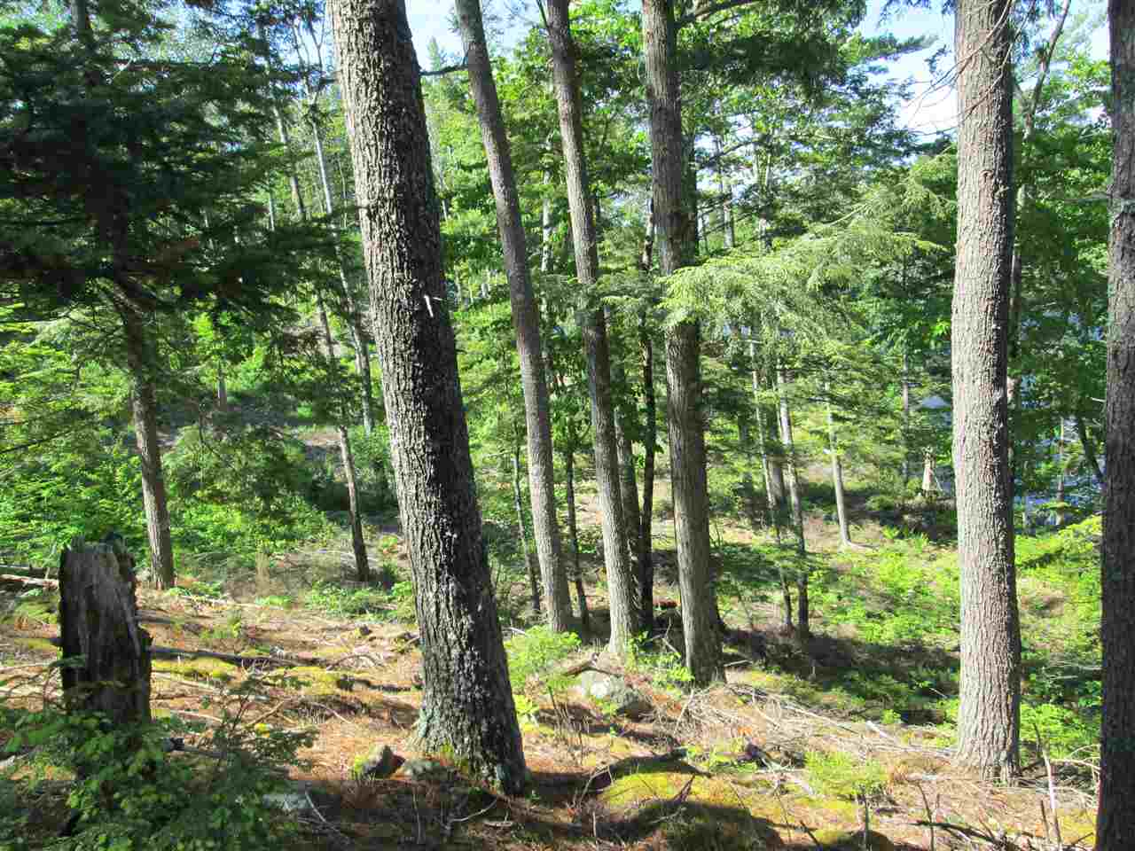 Photo 17: Photos: Lot 41 Homestead Estates Drive in Italy Cross: 405-Lunenburg County Vacant Land for sale (South Shore)  : MLS®# 201610383