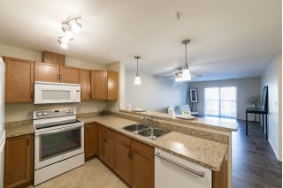 Main Photo: 204 7909 71 Street in Edmonton: Zone 41 Condo for sale : MLS® # E4087687