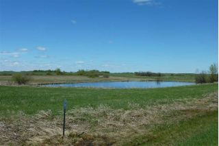 Main Photo: 181037 TWP RD 540: Rural Lamont County Rural Land/Vacant Lot for sale : MLS®# E4113333