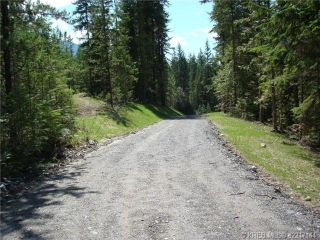 Main Photo: Lot 10 Alexander Road in Nakusp Rural: Home for sale : MLS® # 2217147