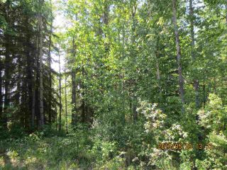 Main Photo: East Bank Road Range Road 135A: Rural Yellowhead Rural Land/Vacant Lot for sale : MLS®# E4029722