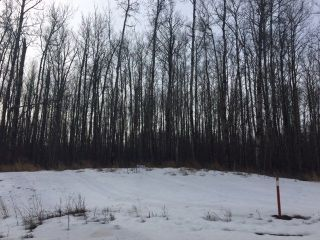 Main Photo: Lot 3 645048 RR 200: Rural Athabasca County Rural Land/Vacant Lot for sale : MLS®# E4057688