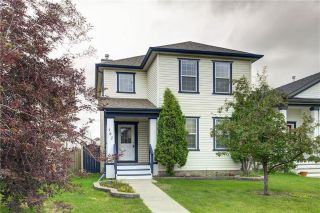 Main Photo: 182 COPPERFIELD Gardens SE in Calgary: Copperfield House for sale : MLS®# C4193593