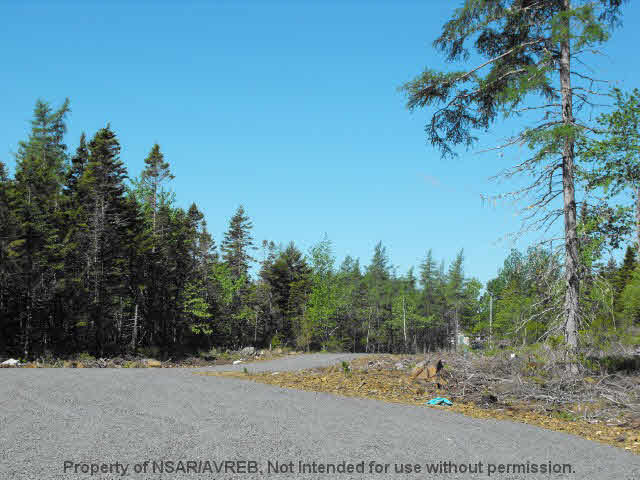 Photo 3: Photos: LOT 5 COOKS BROOK DIVERSION HWY 332 in Bayport: 405-Lunenburg County Vacant Land for sale (South Shore)  : MLS® # 5028515