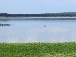 Main Photo: 1314 TWP 545: Rural Lac Ste. Anne County House for sale : MLS® # E4069666