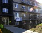 Main Photo: 2 11827 105 Street in Edmonton: Zone 08 Condo for sale : MLS® # E4091892