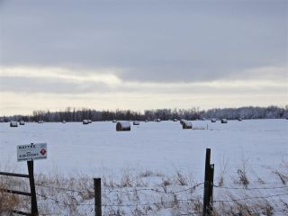 Main Photo: Twsp 575A Range Road 230: Rural Sturgeon County Rural Land/Vacant Lot for sale : MLS® # E4087448