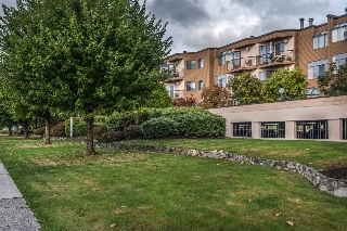 "Main Photo: 3 11900 228 Street in Maple Ridge: East Central Condo for sale in ""MOONLITE GROVE"" : MLS® # R2210610"