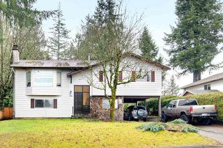 Main Photo: 19990 50 Avenue in Langley: Langley City House for sale : MLS® # R2231885