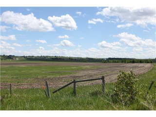 Main Photo: : Rural Foothills M.D. Land for sale : MLS® # C3619693