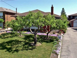 Main Photo: Bsmt 113 Lawnside Road in Toronto: Maple Leaf House (Bungalow) for lease (Toronto W04)  : MLS®# W3686087