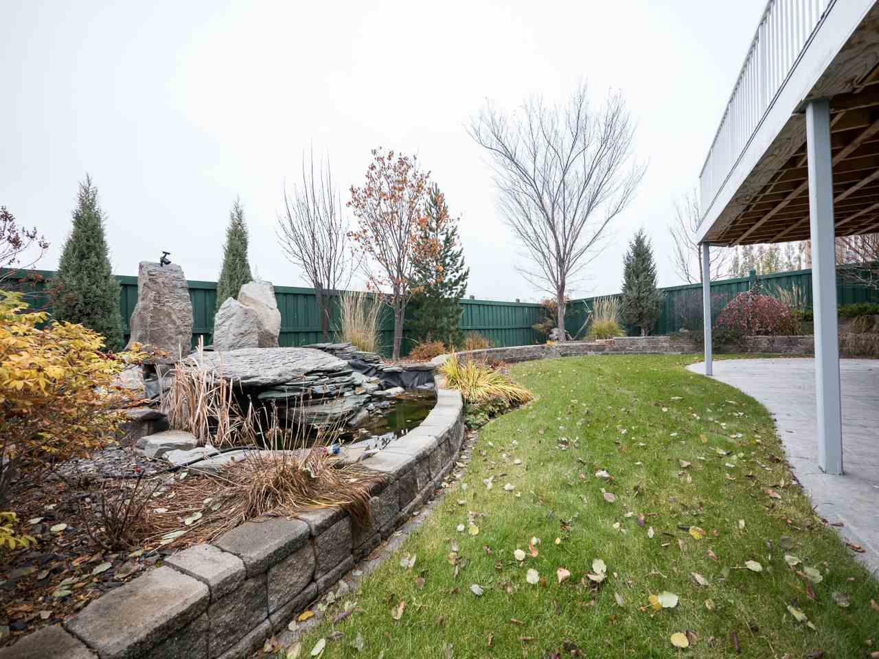 Beautiful terraced yard with lots of trees, shrubs, perennials and rock features.