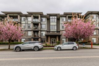 "Main Photo: 101 33338 MAYFAIR Avenue in Abbotsford: Central Abbotsford Condo for sale in ""The Sterling"" : MLS®# R2262234"